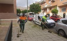 Medidas para quitar las malas hierbas en Mérida