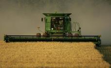 APAG pide ayudas para el cereal ante una caída de la producción del 45%