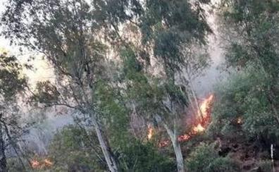 La Guardia Civil investiga a cinco personas por los incendios en La Serena y Zafra