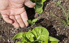 Más de 400 agricultores se incorporan a la producción ecológica en la región