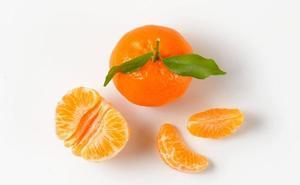 Lección de literatura con una mandarina