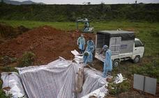 El apocalipsis porcino devasta Asia