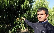 «Me faltan diez trabajadores para recoger la fruta»