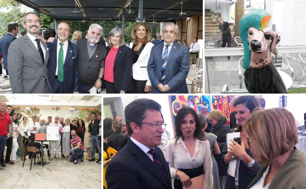Primavera solidaria y el fin de Cáceres Abierto