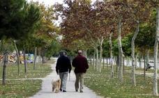 El Tribunal de Cuentas detecta el pago de pensiones asistenciales a nueve fallecidos en la región