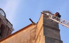 Los bomberos rescatan en Zafra un polluelo de cigüeña que quedó atrapado por una pata en su propio nido