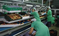 Las exportaciones extremeñas bajaron un 3,7% en abril