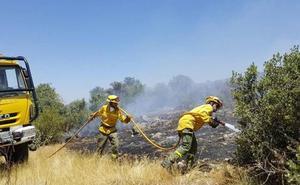 Medio Ambiente contratará de urgencia a 61 peones para luchar contra los incendios