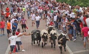 El toro Cidrón hiere a tres personas en el primer encierro de San Juan de Coria