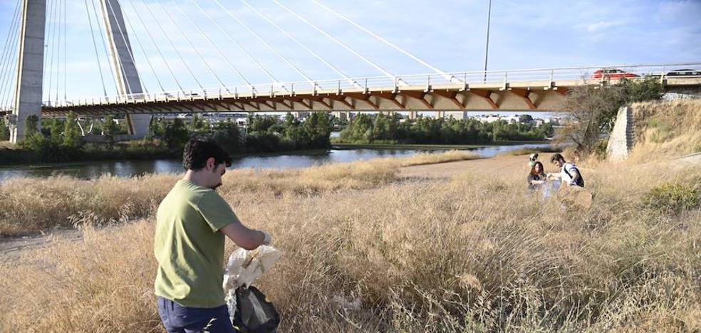 Tardes de paseo y limpieza por el río en Badajoz