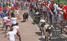Un toro de ensueño en Coria en la tarde de San Juan