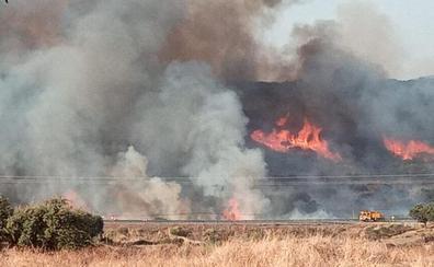 Desactivado el nivel 1 de peligrosidad del incendio en Cañaveral, que ha sido estabilizado