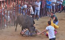 El toro Amante no dio el juego esperado