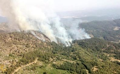 Castilla y León solicita a la UME en el incendio de El Arenal en el que intervienen medios extremeños