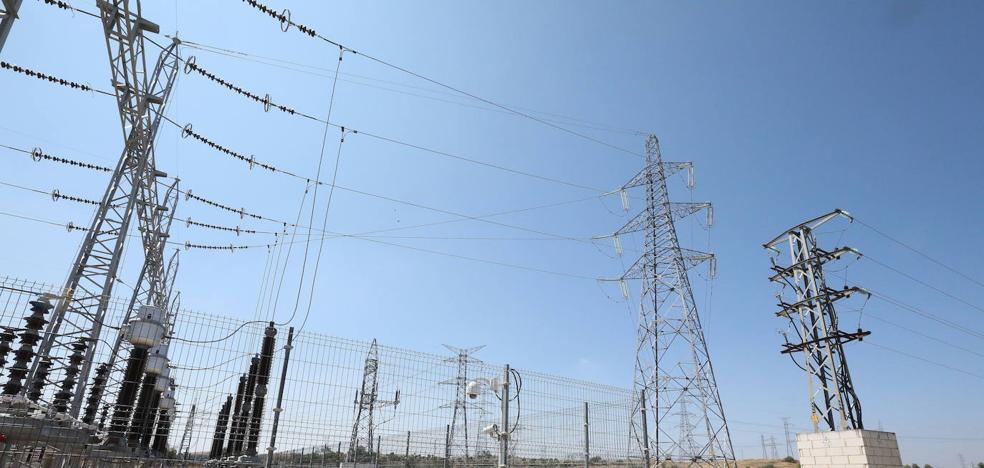 Las eléctricas deben hacer obras en 800 líneas para evitar daños a aves