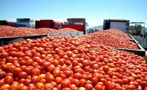 Las sanciones a camiones durante la campaña del tomate cayeron un 17% en 2018