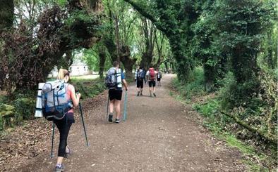 Cinco jóvenes del Marcelo Nessi realizan el Camino de Santiago con los scouts