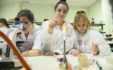 Un verano para aprender ciencia