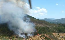 Un incendio forestal calcina 12 hectáreas en Torrecilla de los Ángeles