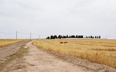 Habilitan un camino peatonal hasta el cementerio de Campanario