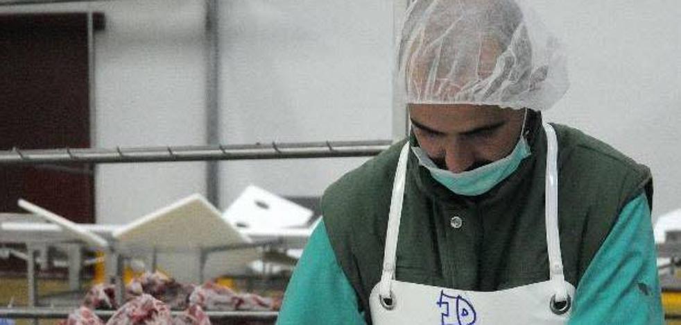 La Junta recibe 172 peticiones de ayuda para industrias del sector agrícola