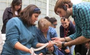 Terapia con reptiles en el campamento de Plena Inclusión