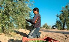 Los afiliados extranjeros a la Seguridad Social en Extremadura aumentan un 3,8%