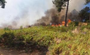 Controlado el incendio forestal en Torrecilla de los Ángeles