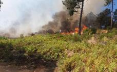 El fuego vuelve a castigar a Torrecilla de los Ángeles