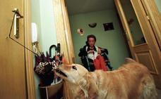 Extremadura regula el uso de perros de asistencia para personas con discapacidad