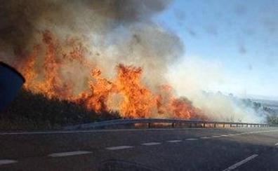 El Infoex sofoca un incendio forestal en Jaraíz