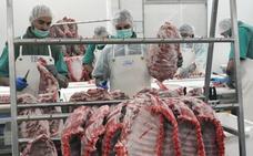 La producción de porcino hace a España una potencia mundial