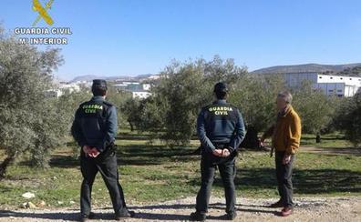Detenido un vecino de Almendralejo por estafar a 84 olivareros cacereños