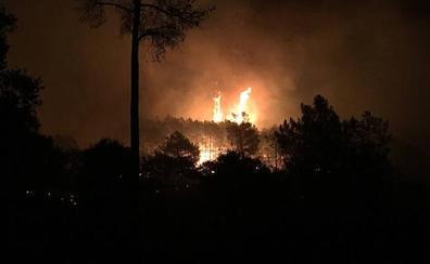 El Infoex consigue controlar el incendio del pinar de Monesterio