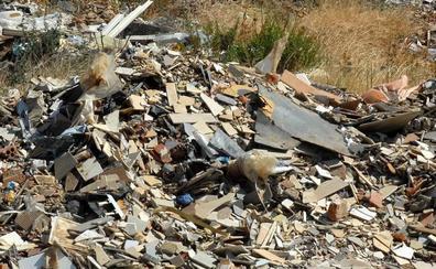 Promedio retira casi 5.000 toneladas de escombros en el primer año de funcionamiento de este servicio