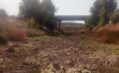 Los ecologistas critican a la Confederación del Guadiana por dejar seco el río Matachel