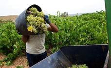 La Unión critica a Asevex por intentar bajar el precio de la uva