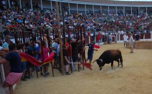 Las fiestas de Trujillo incluyen un festejo taurino solo para mujeres