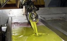 El aceite de oliva busca soluciones