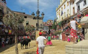 Comienzan las ferias y fiestas del Tabaco y del Pimiento en Jaraíz