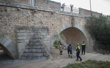 Cae una loseta del puente de Palmas de Badajoz