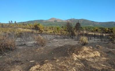 El Infoex da por controlado un incendio en la Sierra de Gata que afectó a 40 hectáreas