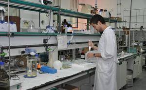 Las investigaciones llevan a la UEx a entrar en el ranking mundial de universidades