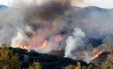 La Guardia Civil detiene a 9 personas por provocar 11 incendios en 6 provincias