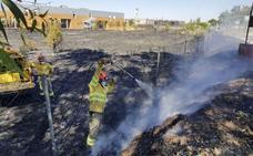 La inmensa mayoría de las hectáreas quemadas en la región son de pastos