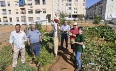 Un huerto urbano y solidario en el barrio Suerte de Saavedra de Badajoz