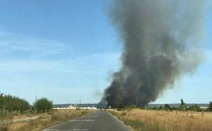 Controlado el incendio de pasto en Saucedilla