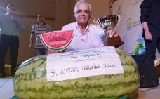 Antonio González Casillas cosecha una sandía de cien kilos, la mayor de España