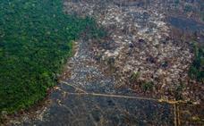 Diez preguntas para entender por qué debería importarte proteger el Amazonas
