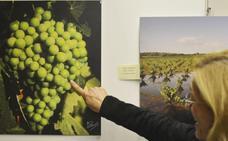 Siguen las actividades de la Semana Cultural de la uva Eva-Beba en Los Santos